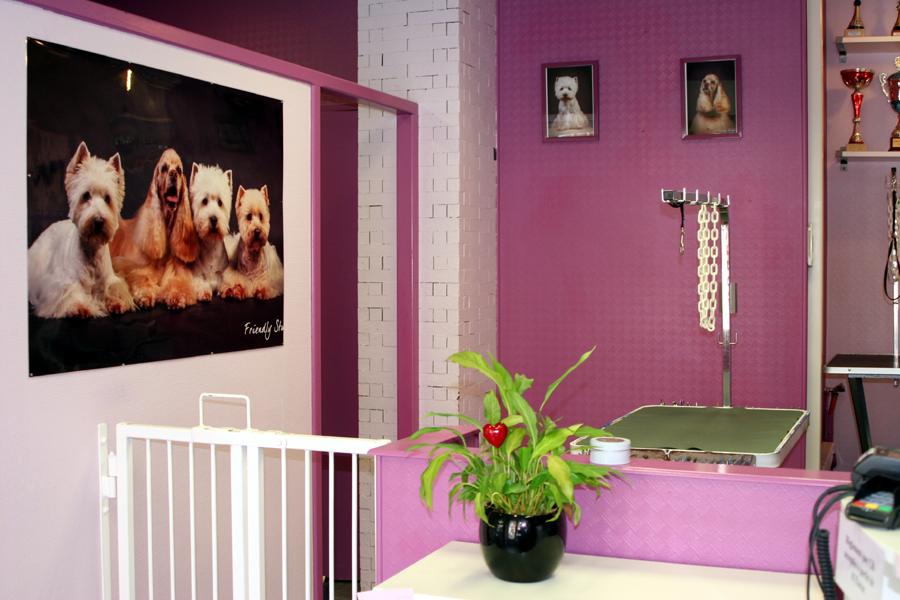 vonnas-toilettage1