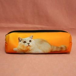 Trousse chat sur fond orange