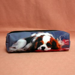 Trousse motif cavalier king charles